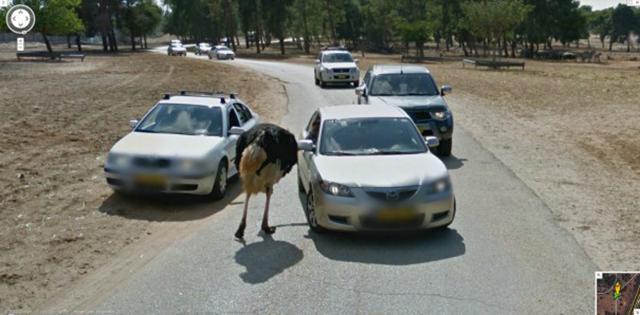 google_streetview_28