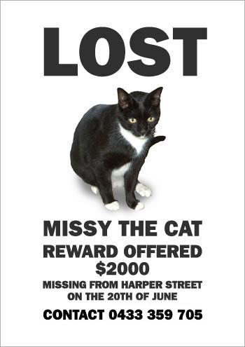 Missing Misty