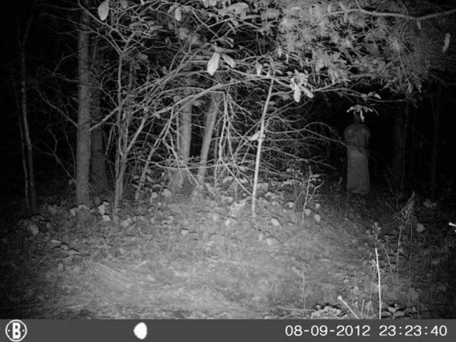 trail-cam-lady-in-the-woods