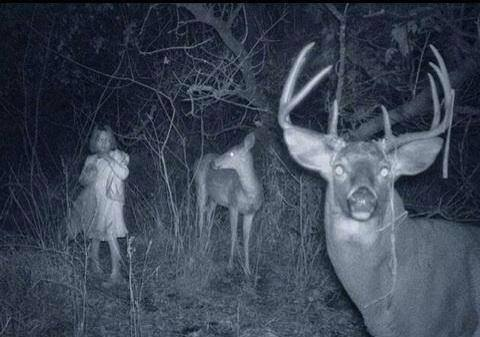 trail-cam-little-girl-2