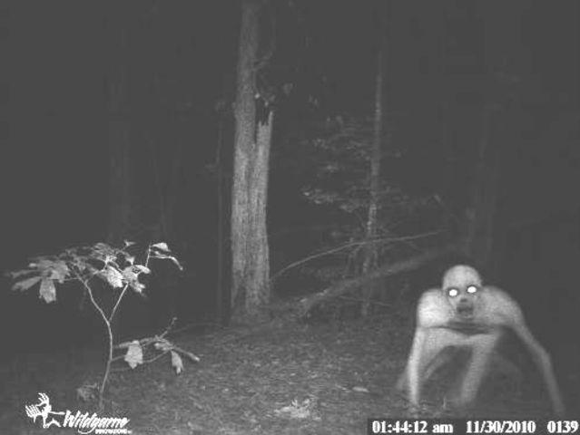 trail-cam-zombie